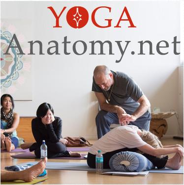 YogaAnatomy.net